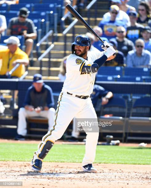 Omar Narvaez of the Milwaukee Brewers gets ready in the batters box against the San Francisco Giants during a spring training game at American Family...