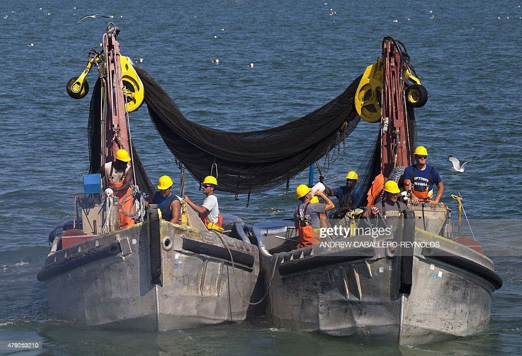 US-ENVIRONMENT-ECONOMY-LABOR-FISHING-OMEGA : News Photo