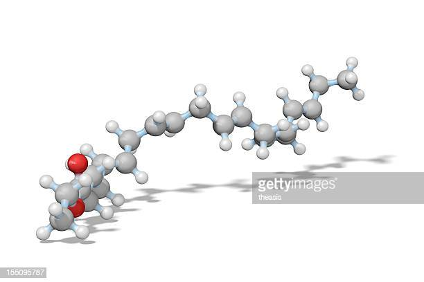 omega-3 essential fatty acid model - theasis stockfoto's en -beelden