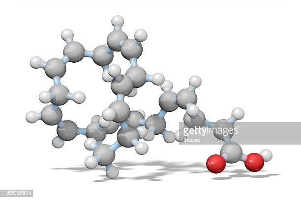 Omega - 3 Essential Fatty Acid-Modell
