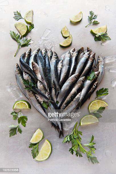 omega-3 rich sardines arranged in shape of a heart - fish love ストックフォトと画像