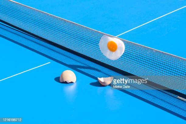 omelet op pingpong tafel - funny ping pong stock pictures, royalty-free photos & images