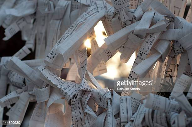 omikuji predicts - shrine stock pictures, royalty-free photos & images