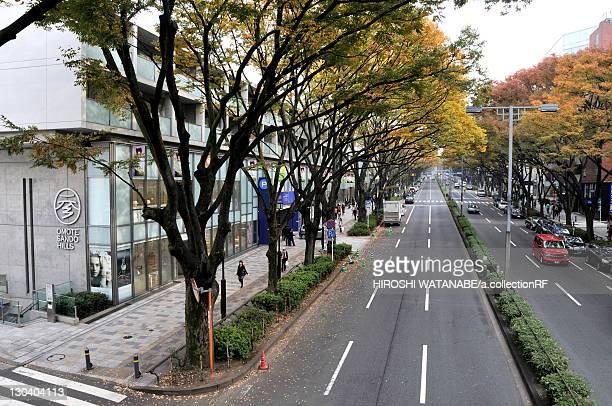 Omotesando Avenue in Autumn