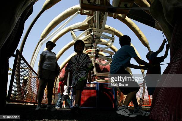 – On a busy summer day children and their parents walk through the chest of a two–story tall ArgentinosaurusThe latest exhibit at the Discovery...