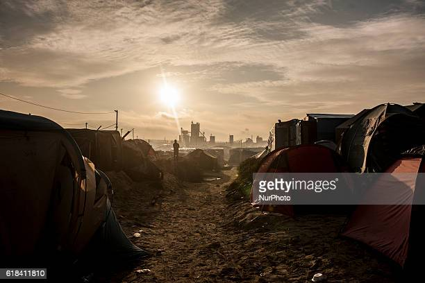 On a dune height of the jungle a refugee looks at what remains of the jungle in Calais October 26 2016 The jungle of Calais is marked by its third...