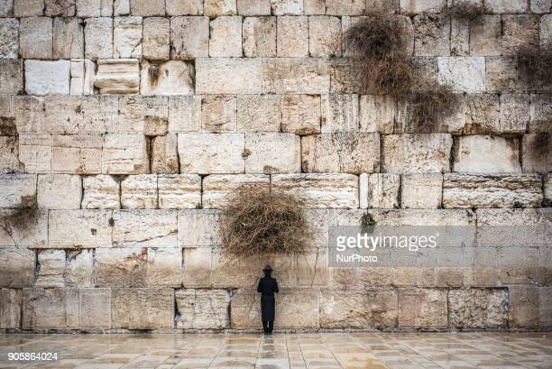 60 Top Western Wall Pictures, Photos, & Images - Getty Images