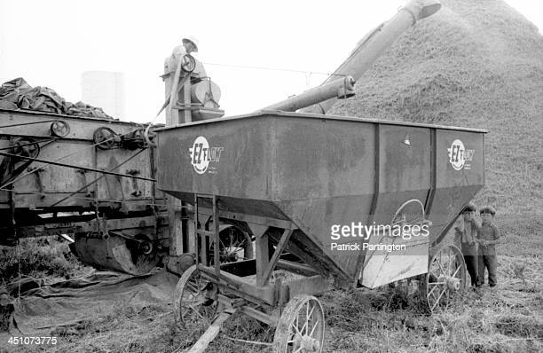 On an Amish farm a pair of boys one with his hands over his ears stand under a grain trailer beside a combine harvester operated by a man in a hat...