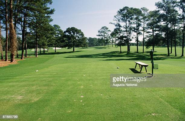 On course view of the 17th hole and the Eisenhower Tree from the tee box during the 1992 Masters Tournament at Augusta National Golf Club on April...