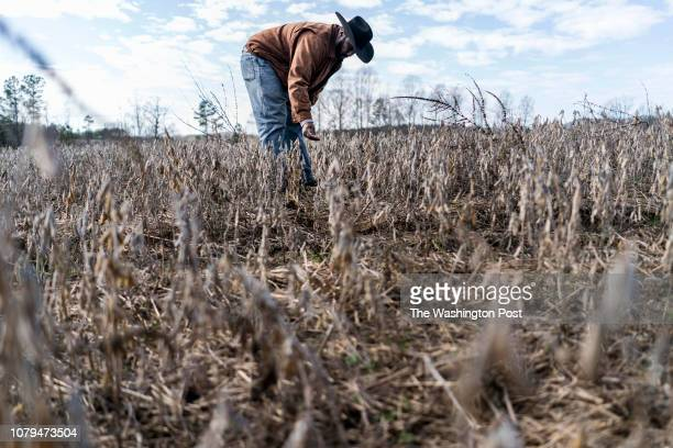 On day 19 of the partial government shutdown fourth generation crop farmer John Boyd and president of the Black Farmer's Association checks the...