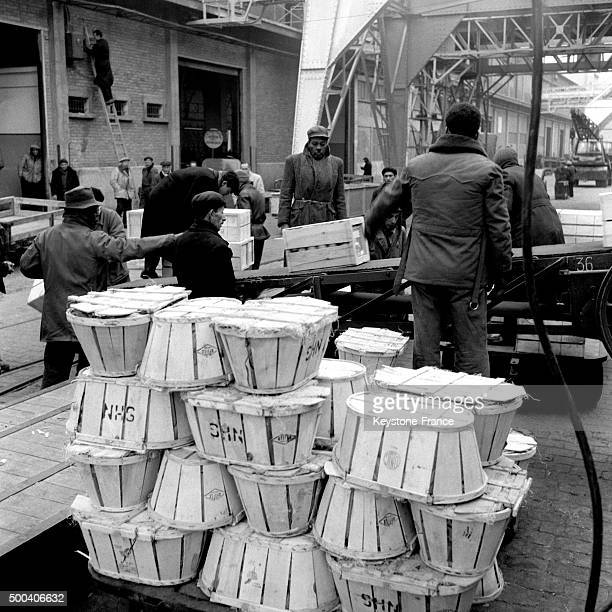 On Marseille harbour dockers at work 1955 in Marseille France