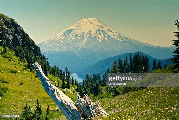mount saint helens before the eruption - mount st. helens stock pictures, royalty-free photos & images