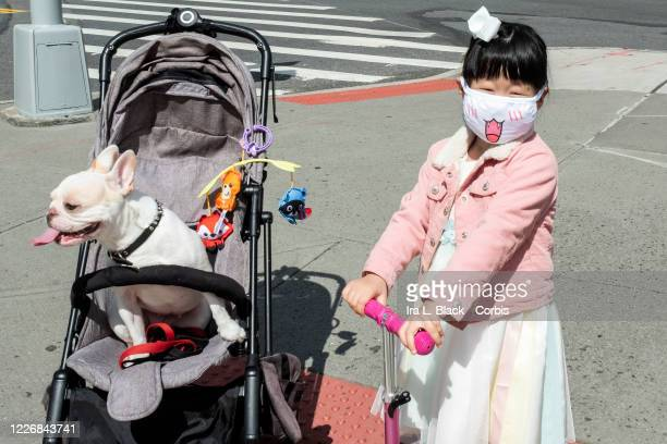 On Memorial Day weekend a young girl wears a mask with a tongue sticking out standing next to a dog with its tongue sticking out in a stroller by...