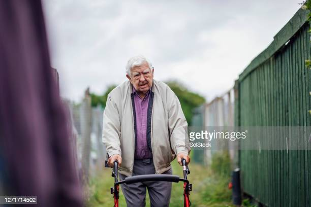 on my way to the allotment - fragility stock pictures, royalty-free photos & images