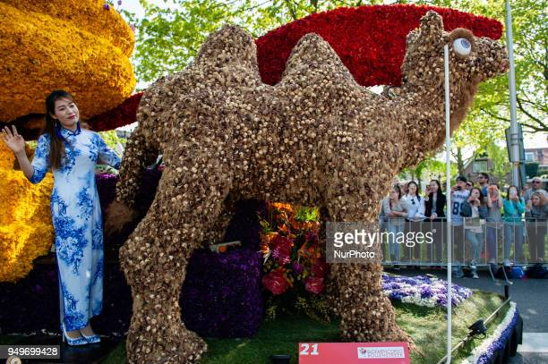 On Saturday 21 April 2018 in Lisse Netherlands the 71st edition of the Bollenstreek Bloemencorso will follow a 40 km route from Noordwijk to Haarlem...