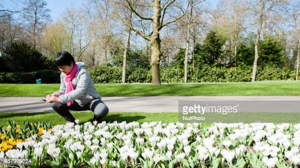 On Saturday 25 March 2017 This is the first weekend of this year that Keukenhof also known as the Garden of Europe one of the world's largest flower...