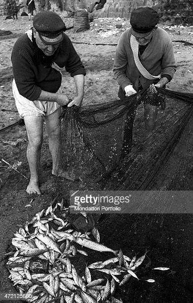 'On the beach two barefoot fishermen wearing hat and rolled pants unroll a net full of fishes Naples 1960 '