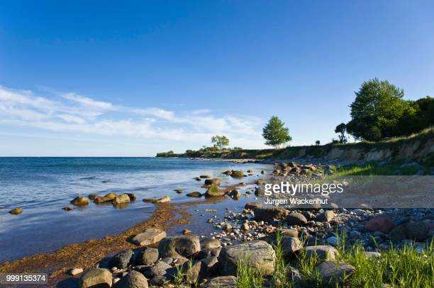 On the coastal cliffs of Staberhuk, Fehmarn Island, Baltic Sea, Schleswig-Holstein, Germany