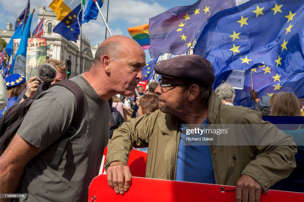 Westminster Brexit Protest : News Photo