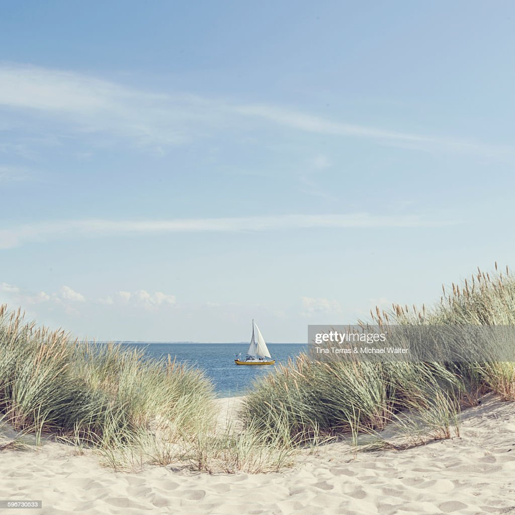 On the island of Sylt : Stock Photo