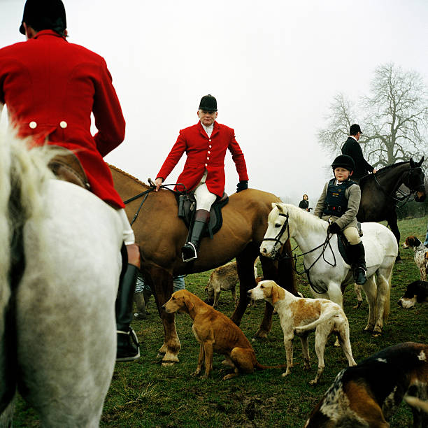 fox hunting speech Fox hunting is the most iconic and common of the four types  leading environment secretary andrea leadsom to drop mention of repeal from her speech.