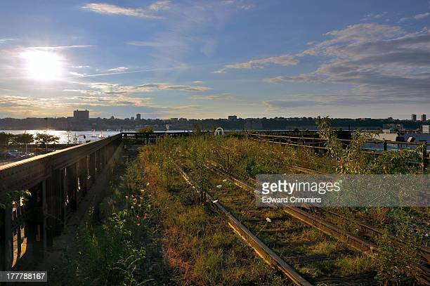 On the northern extension of High Line Park that has not been developed yet. Soon this will be part of the elevated park and opened to the public.
