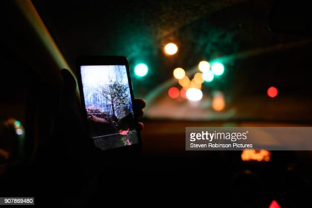 on the phone in car - police car stock pictures, royalty-free photos & images