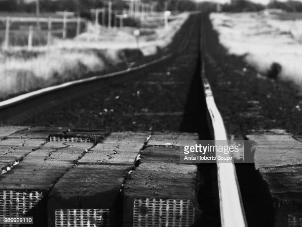 on the rails - holocaust in color stock pictures, royalty-free photos & images