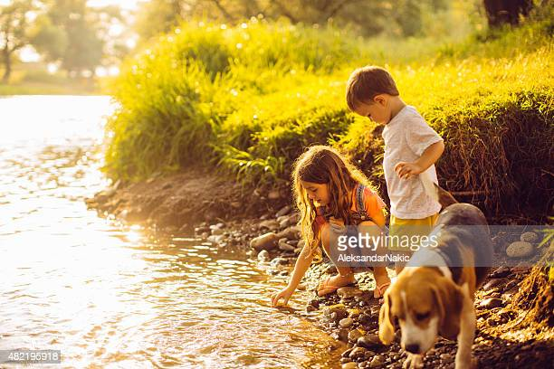 on the riverbank - water's edge stock pictures, royalty-free photos & images