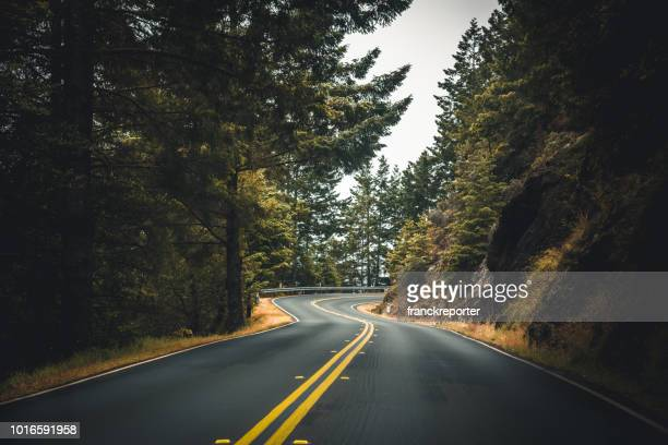 on the road in a foggy road in usa - road stock pictures, royalty-free photos & images