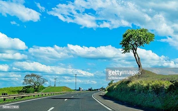on the road - crmacedonio stock pictures, royalty-free photos & images