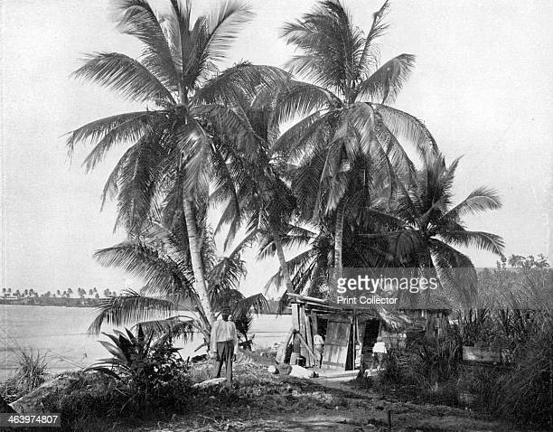 On the road to Blue Hole, Port Antonio, Jamaica, c1905. Photograph from Picturesque Jamaica, by Adolphe Duperly & Son, .