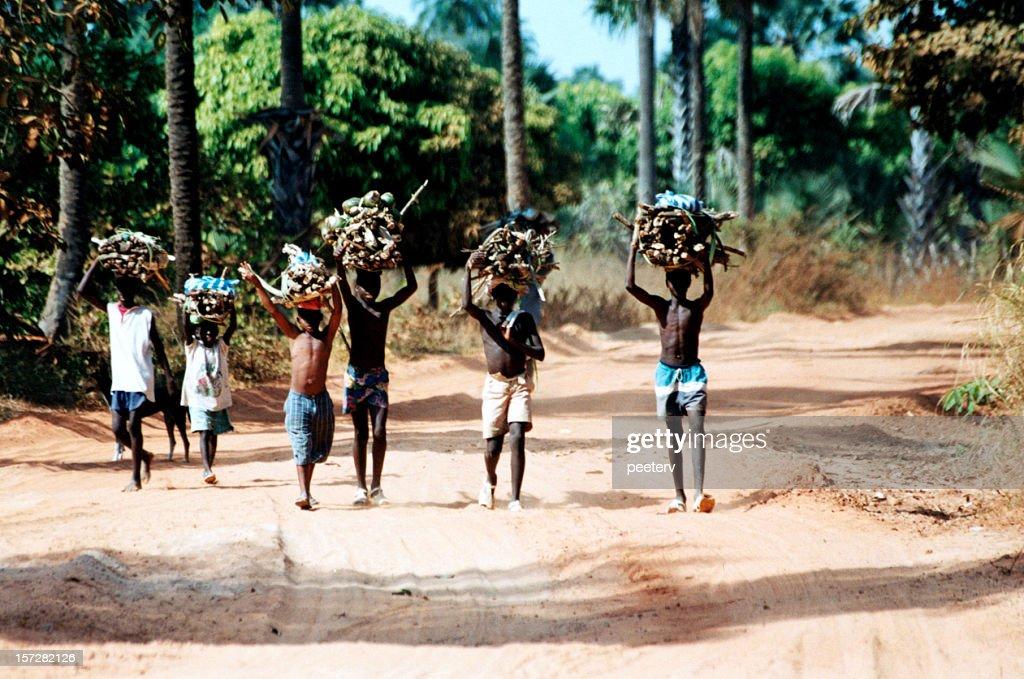 Na estrada com Lenha : Foto de stock