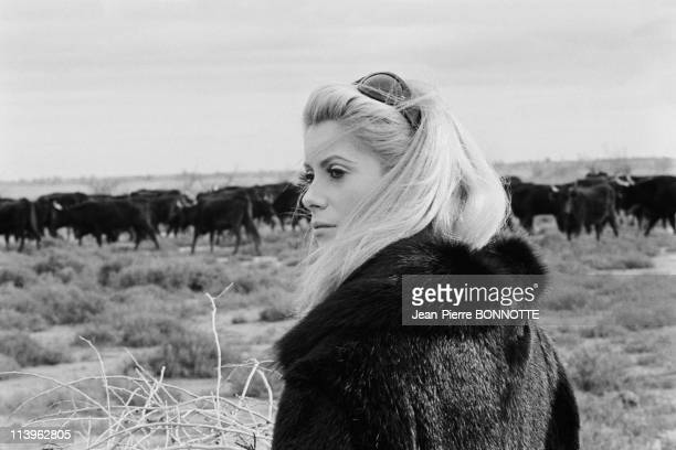 On the Set of the Movie Belle de Jour In France in December 1966French actress Catherine Deneuve on the set of the movie 'Belle de Jour' directed by...
