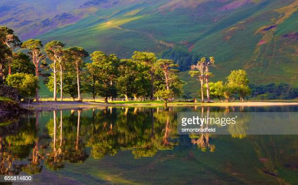 on the shore of buttermere in the english lake district - english lake district stock photos and pictures
