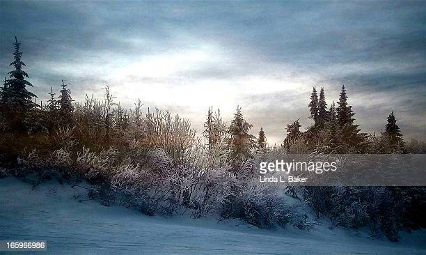 on the ski trail - mont tremblant stock pictures, royalty-free photos & images