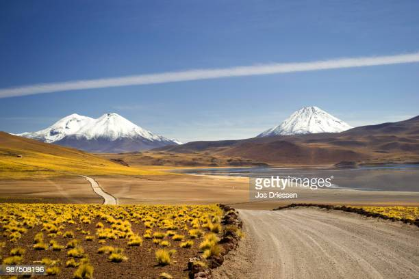 on the way to lake miscanti, atacama dessert, chil - chile stock photos and pictures