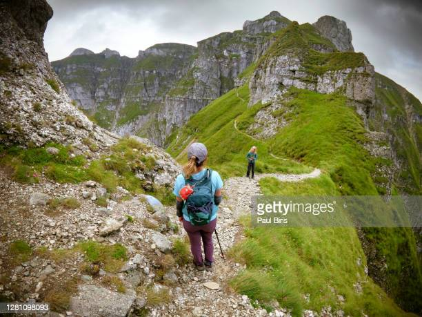 on the way to tiganesti towers on the lateral ridge of bucegi mountains, romania - vista lateral stock pictures, royalty-free photos & images