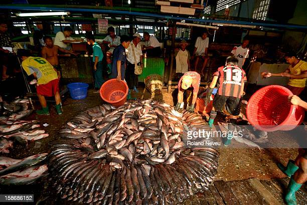 On the Yangon RIver a morning routine is the fish market where most Yangon connoisseurs and restaurants come to fetch their choice of fresh right out...
