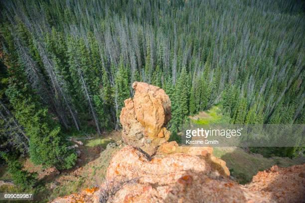 On Top of Rabbit Ears Peak