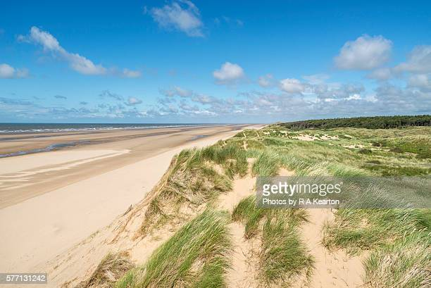 on top of the sand dunes at formby point, merseyside, england - merseyside stock pictures, royalty-free photos & images