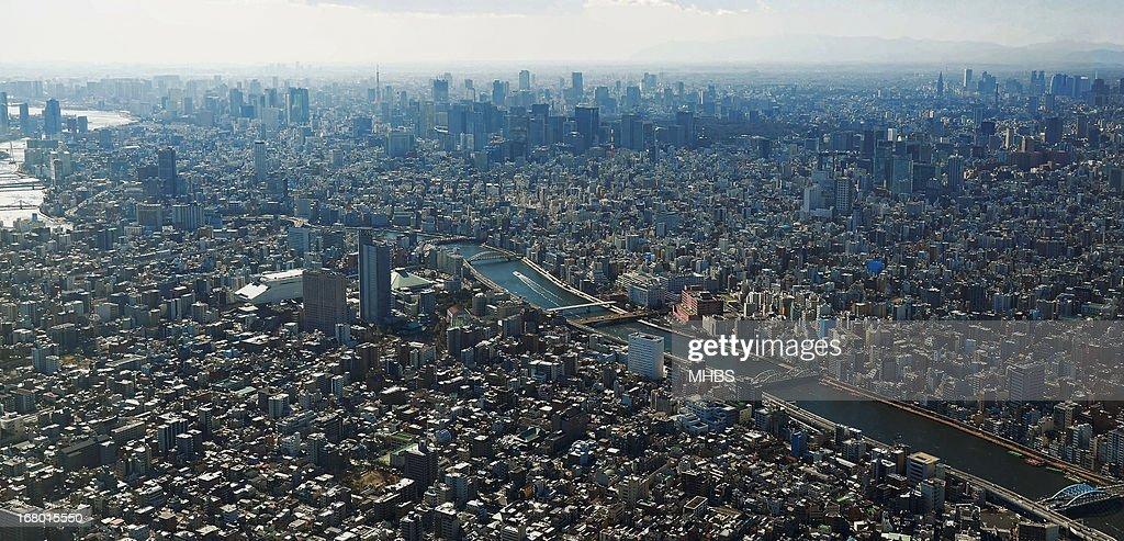 On top of Tokyo city! : ストックフォト