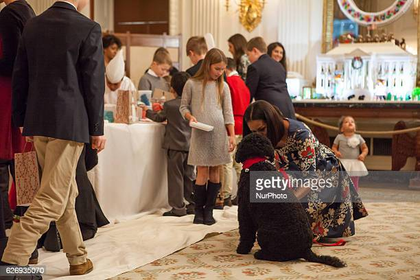 On Tuesday November 29 in the State Dining Room of The White House First Lady Michelle Obama with First Dogs Sunny and Bo were joined by White House...
