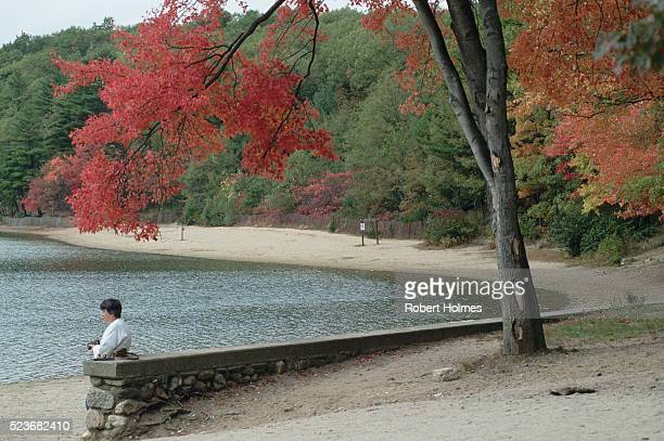 on walden pond - walden pond stock pictures, royalty-free photos & images