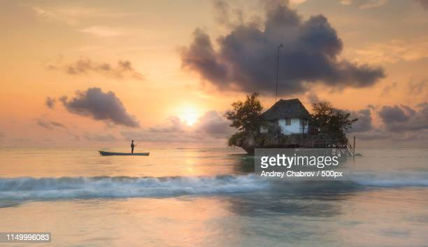 once in the morning in zanzibar - zanzibar stock pictures, royalty-free photos & images