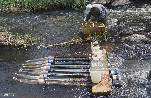 Onchoceriasis Ivory Coast River Marahoue Who River Blindness Programme Hydrological Sampling To Test Environmental Impact Of Spraying To Eradicate...