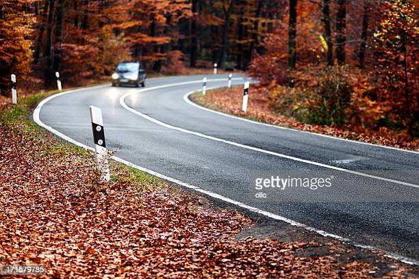 Oncoming Verkehr auf einer herbstlichen Wald road