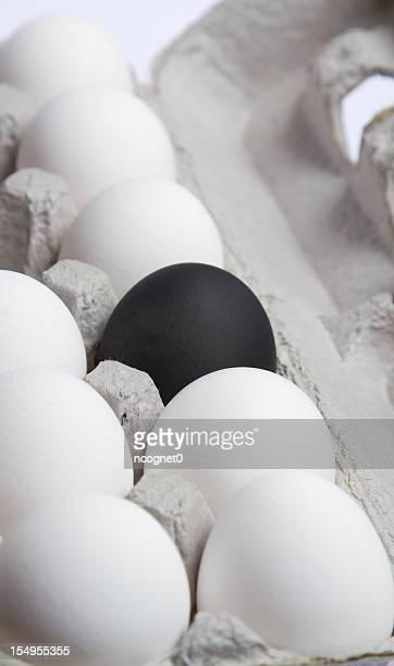 One black egg