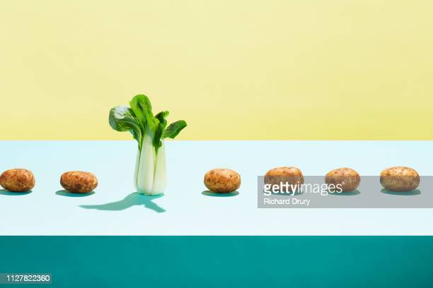 One bok choy in a row of potatoes