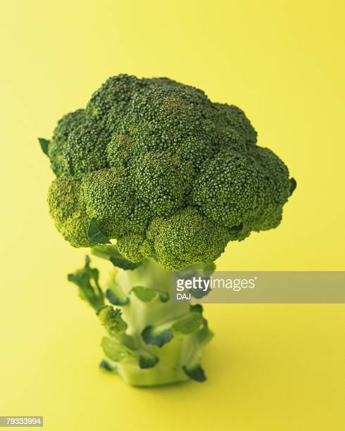 One Broccoli, High Angle View